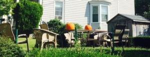 first pumpkins